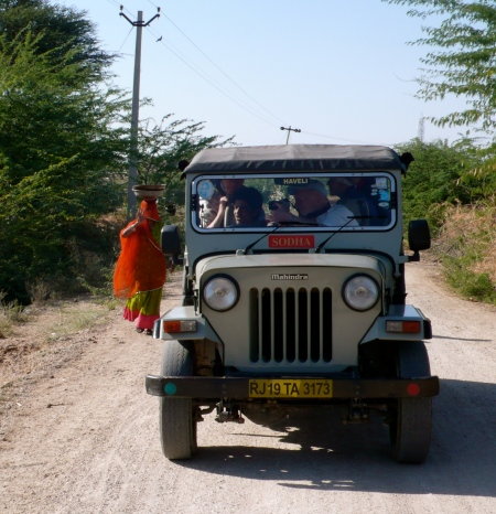 We took three jeeps for the safari (5 people to one jeep plus driver).  In this photo, everyone is photographing the wild antelopes. I love the woman walking by in her red sari balancing a huge bowl on her head!