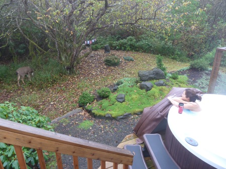 Morning scene: A deer comes by to graze while I soak in the hot tub.