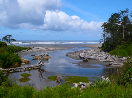 Kalaloch Beach, Olympic Peninsula, Washington