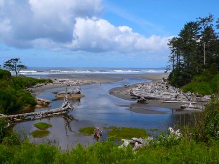 Kalaloch Beach, Olympic Peninsula, Washington