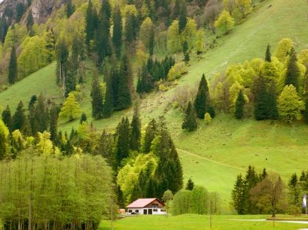 Bavarian Landscape: 30 Shades of Green